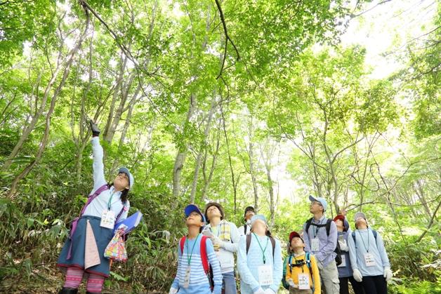 (終了しました)【参加者募集中!】夏休みに自然を体感!サントリー水育(みずいく)「森と水の学校」奥大山校に親子で参加しよう♪