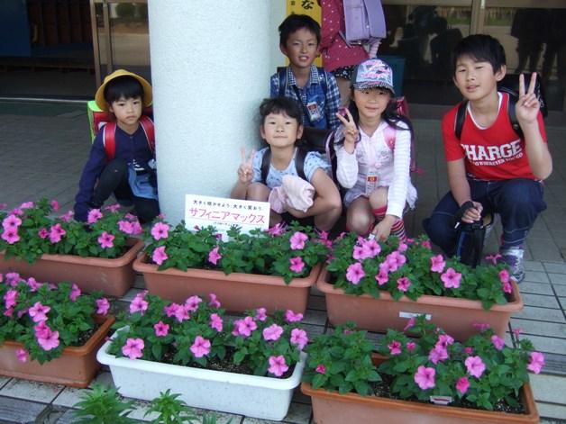 街を花でいっぱいにしませんか?サントリーフラワーズ「大きな花プロジェクト」参加者募集中!
