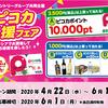 【デリシア×サントリー共同企画】デリシアでサントリー商品を買って「ピコカ応援フェア」に応募しよう!