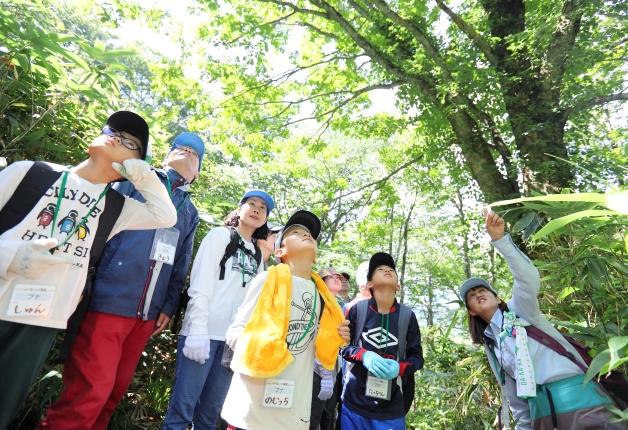 (終了しました)【参加者募集中!】夏休みに親子で参加しよう!サントリー水育(みずいく)「森と水の学校」奥大山校で自然の大切さを体感しよう♪