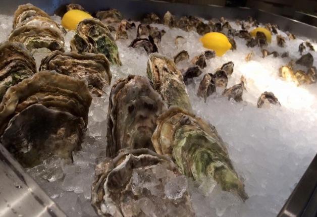 ショーケースの氷の上に並べられた新鮮な牡蠣