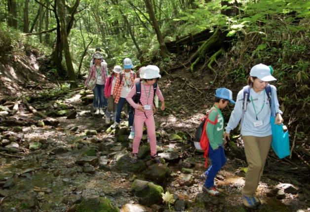 【水育「森と水の学校」阿蘇校2015年レポート】約660名の親子が参加して、大自然の中を探検しました!