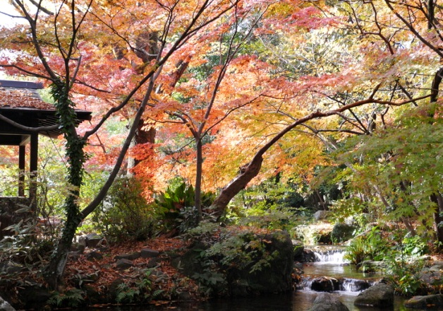【ご投稿ありがとうございました!】九州エリアの皆さんから集まった「ご当地イイトコ自慢」をご紹介します