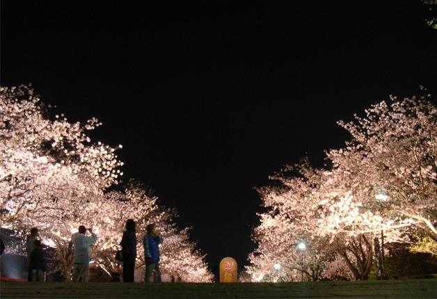 (終了しました)九州エリアのイイトコ自慢♪100名様に人気商品の詰め合わせが当たるキャンペーン実施中! (5月7日まで)