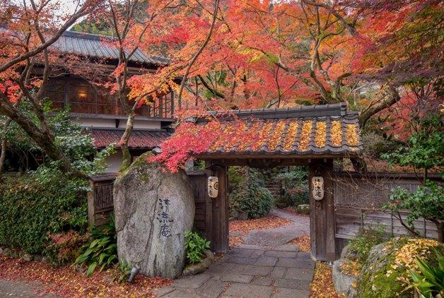 【福岡・熊本のおすすめスポット紹介♪】秋限定商品と一緒にとびっきりの紅葉を楽しみませんか?