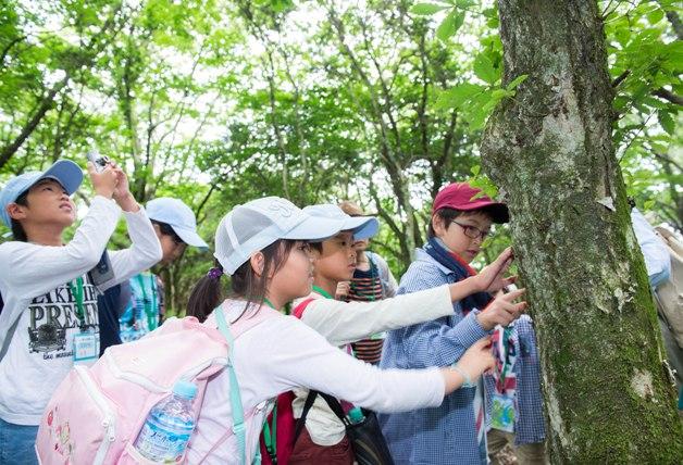 (終了しました)【参加者募集中!】夏休みに自然を体感!サントリー水育(みずいく)「森と水の学校」阿蘇校に親子で参加しよう♪