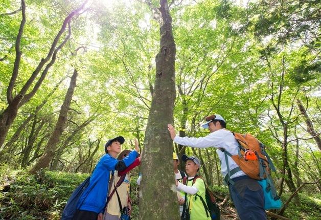 (終了しました)【参加者募集中!】夏休みに親子で参加しよう!サントリー水育(みずいく)「森と水の学校」阿蘇校で自然を体感♪