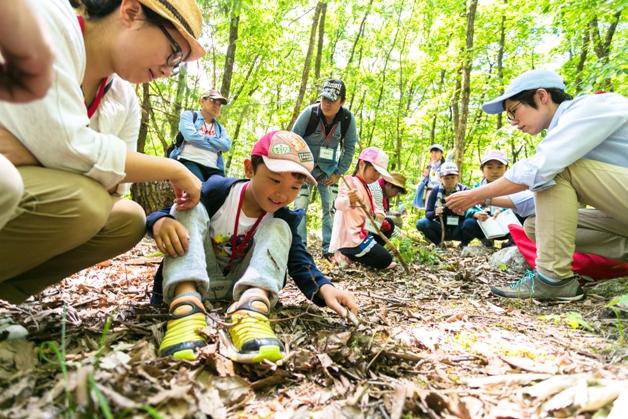 【参加者募集中!】夏休みに自然を体感!サントリー水育(みずいく)「森と水の学校」白州校に親子で参加しよう♪
