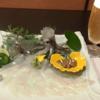 【千葉の超達人店】究極の「ザ・プレミアム・モルツ マスターズドリーム」が楽しめる!柏の「活イカ料理 割烹 いっか」