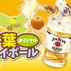 【千葉オリジナルハイボール】酒々井のゆず・八街の生姜・市原の梨、どれが気になる?
