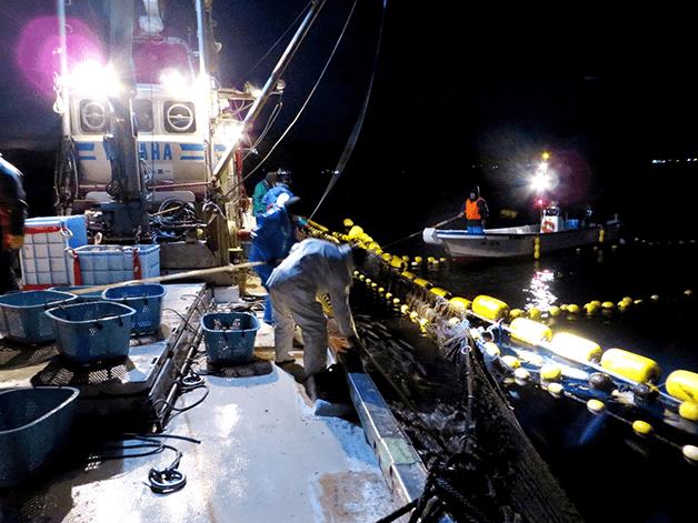 【取材レポート】宮城県気仙沼市の復興支援先で定置網漁に同行しました!