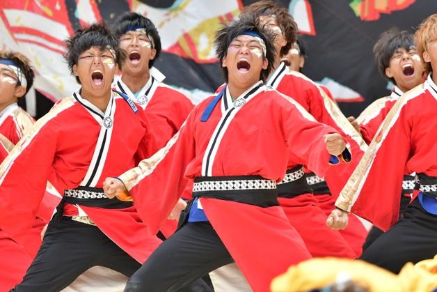 今年も名古屋に「にっぽんど真ん中祭り」がやってくる!参加チームを紹介♪(最終回)