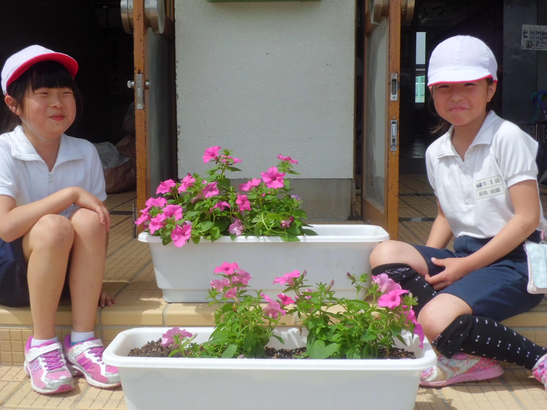 (終了しました)【街を花でいっぱいに♪】サントリーフラワーズ「大きな花プロジェクト」に参加してみませんか?