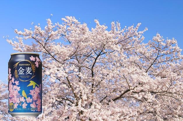 東海・北陸エリアの桜の名所をお届け!お花見のお供は春の「金麦」で決まり♪