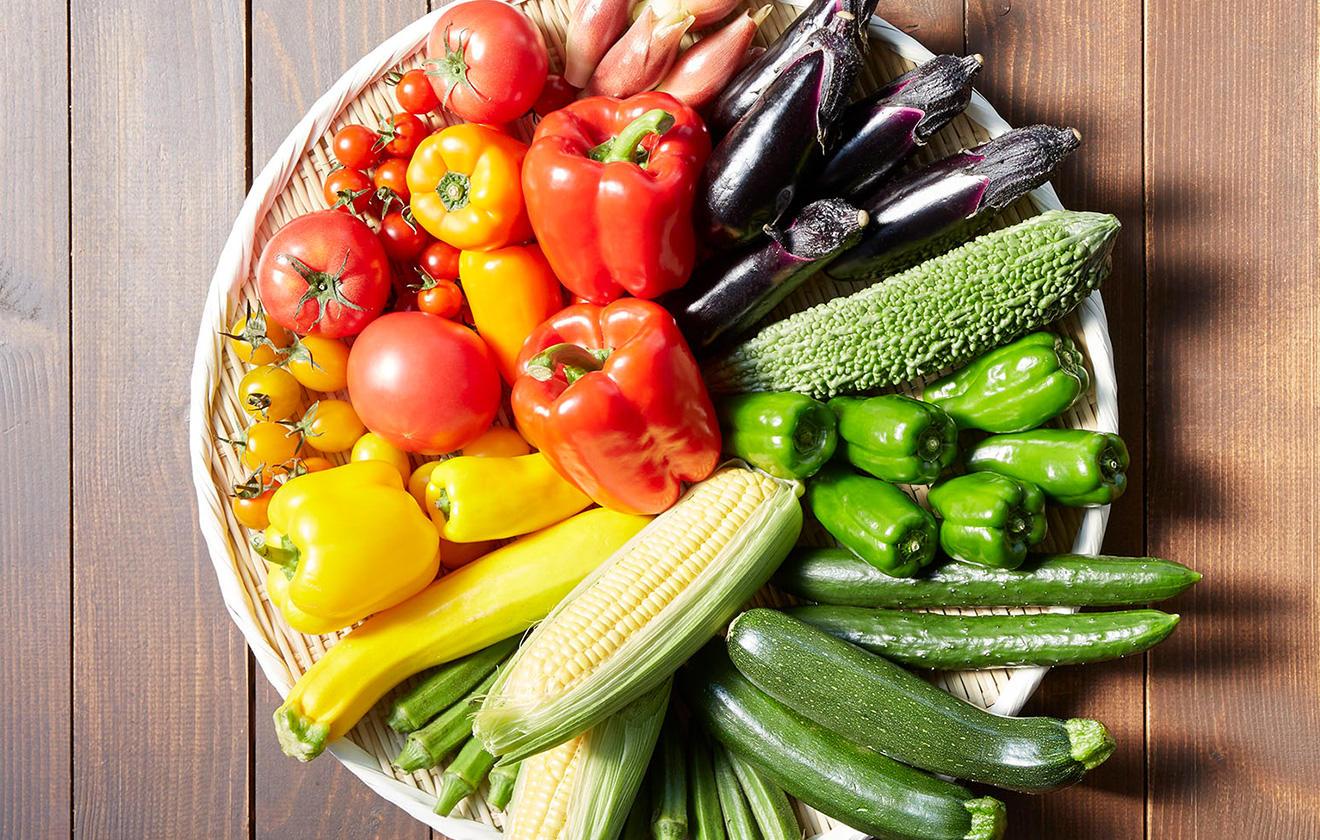 金麦と楽しむ彩り 夏野菜は色を食べる