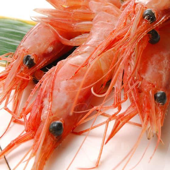 旬の食材・甘海老の写真