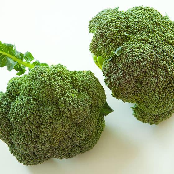 旬の食材・ブロッコリーの写真