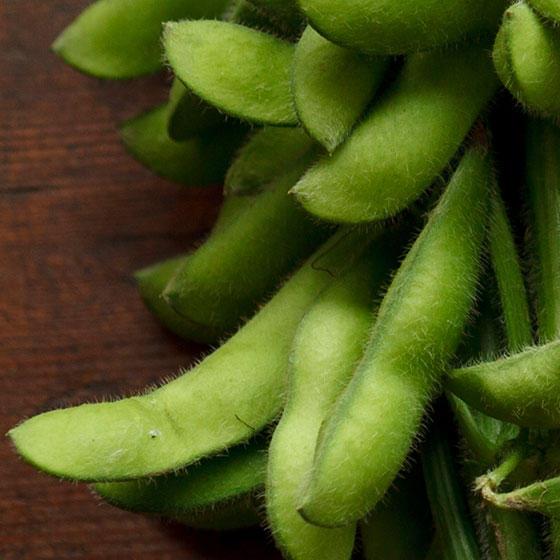 旬の食材・枝豆の写真