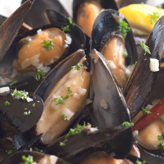 旬の食材・ムール貝の写真