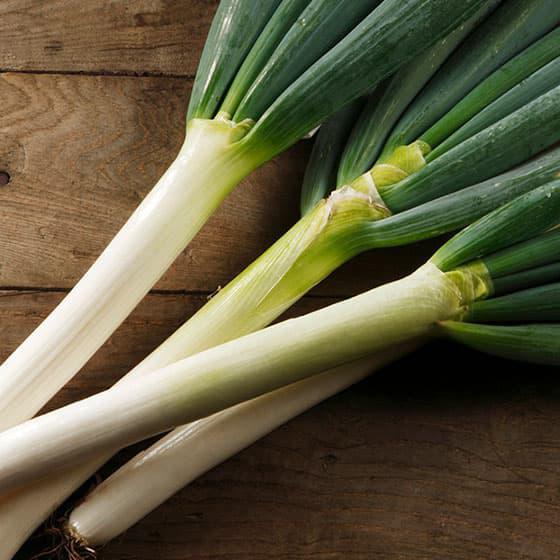 旬の食材・長葱の写真