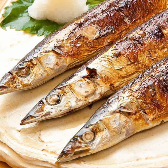 旬の食材・秋刀魚の写真