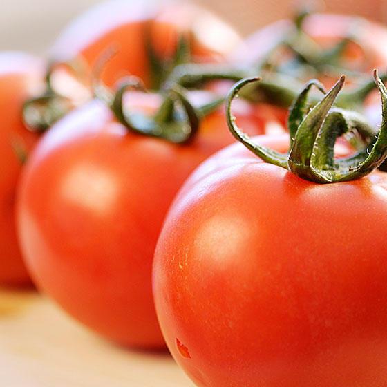 旬の食材・トマトの写真