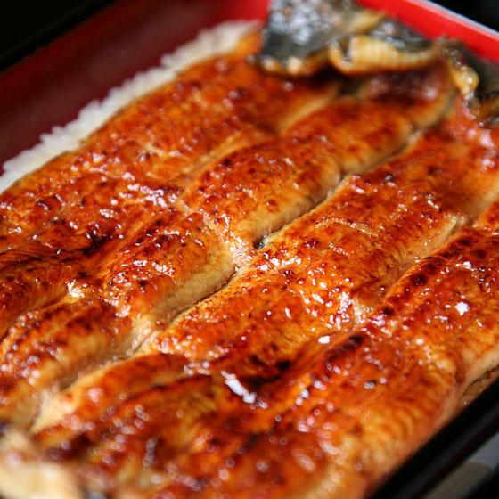 旬の食材・鰻の写真