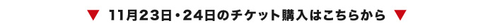 191031_サンバーズ告知ページ_バナー部分(大田区)_01.jpg