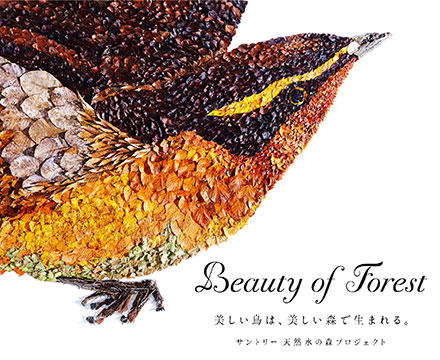 Beauty of Forest 美しい鳥は、美しい森で生まれる。 サントリー 天然水の森プロジェクト