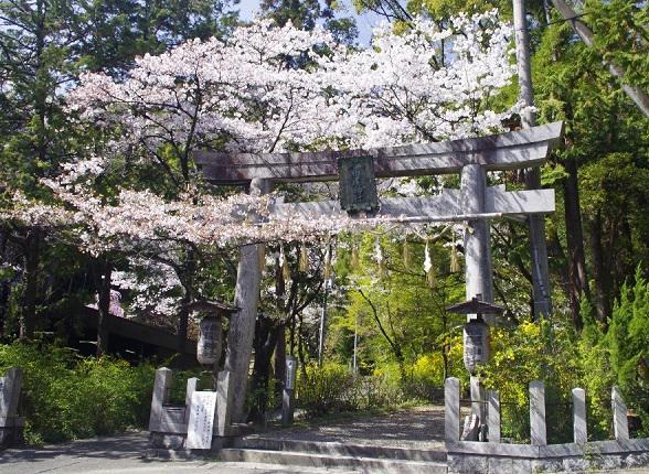⑤椎尾神社.jpg