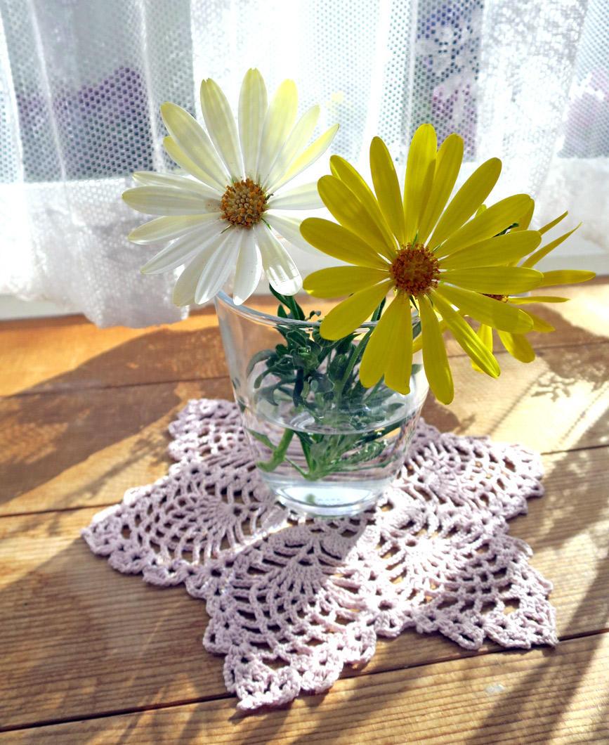 切り戻した花を室内で飾って楽しむ