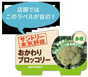 野菜苗  おかわりブロッコリーのラベル