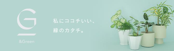 水だけで簡単、アレンジ自在の観葉植物ブランド「&Green」(アンドグリーン)のオフィシャルECサイト