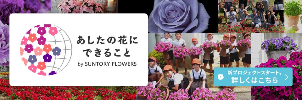 あしたの花にできること