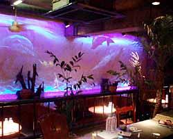 BAR 熱帯夜の画像