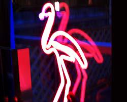 FLAMINGO CAFEのイメージ写真