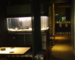 錦_RESTAURANT & BAR BLACK STONE_写真2