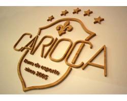CARIOCAの写真その2