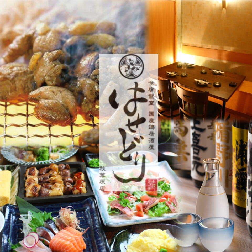 国産鶏居酒屋 はせどり 秋葉原店のイメージ写真