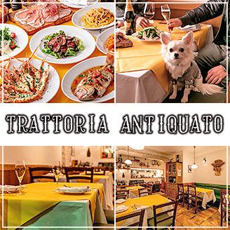 六本木/麻布_隠れ家イタリアン Trattoria Antiquato(アンティクァート)_写真