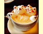 Cafe&DiningBar 珈茶話 kashiwa