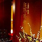 東京駅/有楽町/日比谷_日本料理・鉄板焼 銀熊茶寮_写真6