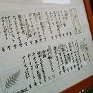 吉祥寺/三鷹_吉祥寺 居酒屋 HARENARI_写真6