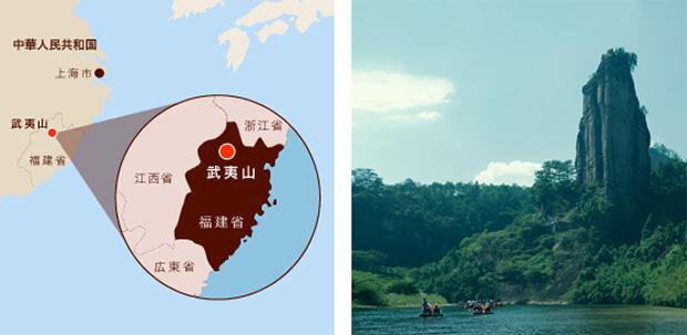 武夷山の画像 p1_22