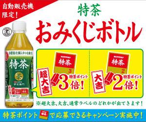 【自動販売機限定】「特茶」オリジナルQUOカードが抽選でもらえるキャンペーン